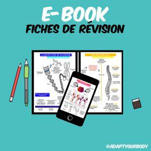 E-book – fiches de révision
